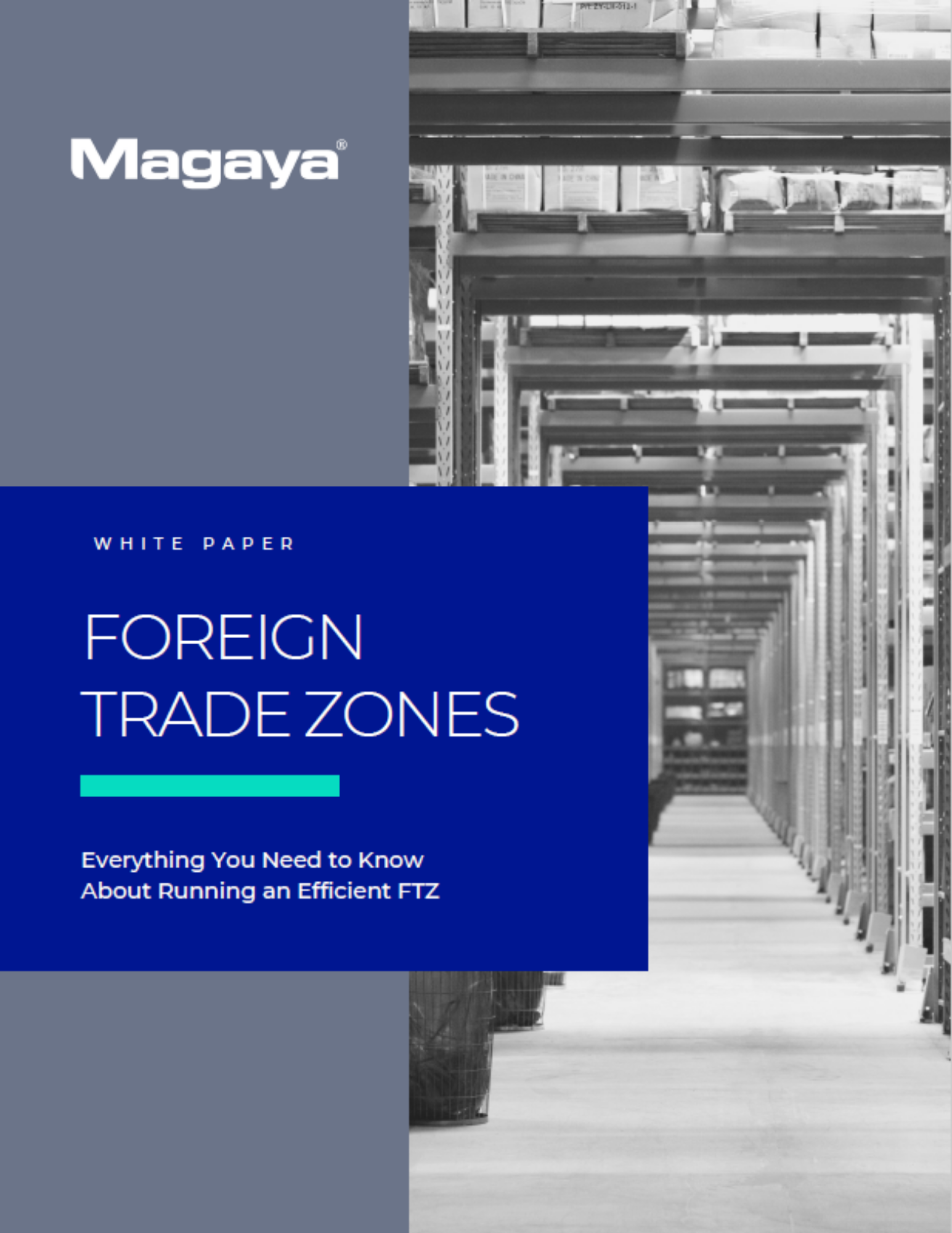 FTZ White Paper Cover - Foreign Trade Zones - Everything You Need to Run an Efficient FTZ